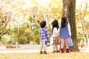 木を見上げる子どもたち